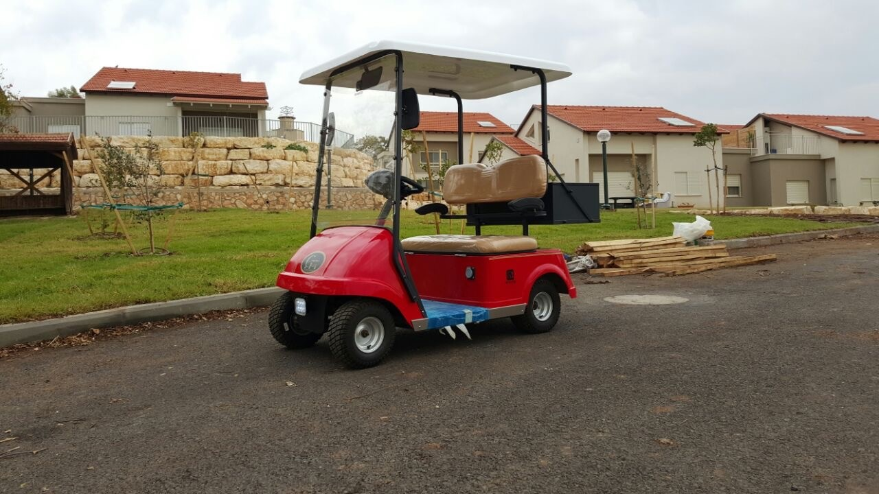 Customized Electric Car Mini Golf Cart 2 Seater With Imported Transaxle For Disabled People