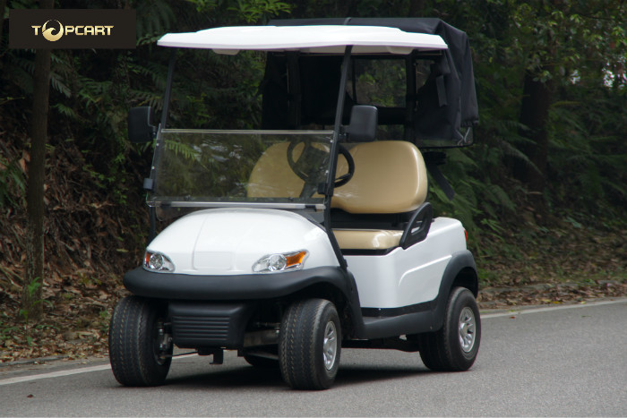 AC System 2 Passenger Golf Buggy With Rear Cover , Automotive Paint Body Finish